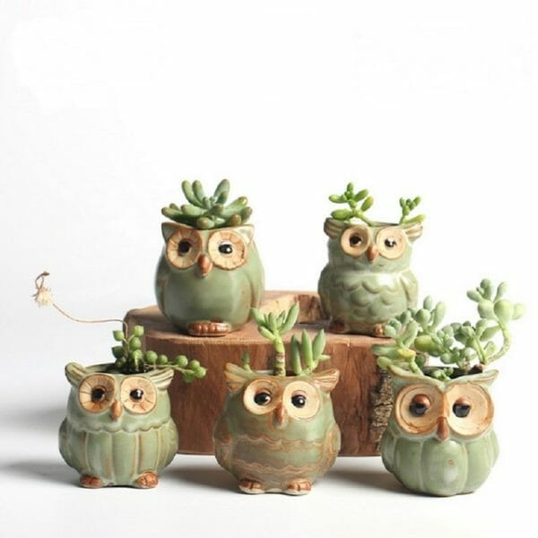 5 Pcs Creative Ceramic Owl Flower Pots