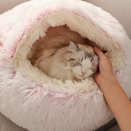 CatSuite Calming Bed