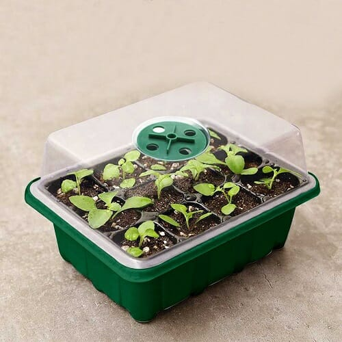 Mini Greenhouse Seed Starter Tray – 5 pcs