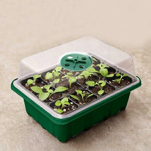 Mini Greenhouse Seed Starter Tray – 5 pcs