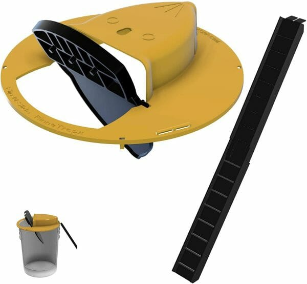 Flip N Slide Bucket Lid Mouse Trap