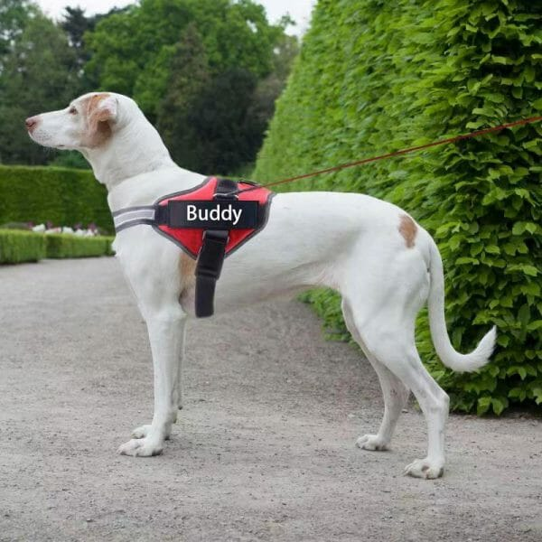 NO PULL Reflective Breathable Adjustable Dog Harness