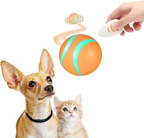 Remote Control Pet Bounce Ball