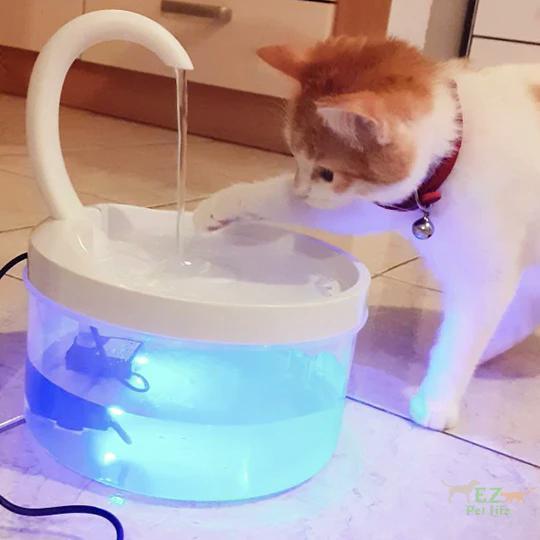 Cat Automatic Swan Design Fountain