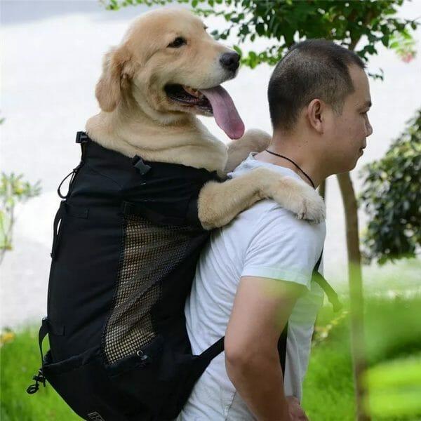 Dog Backpack Sack Carrier